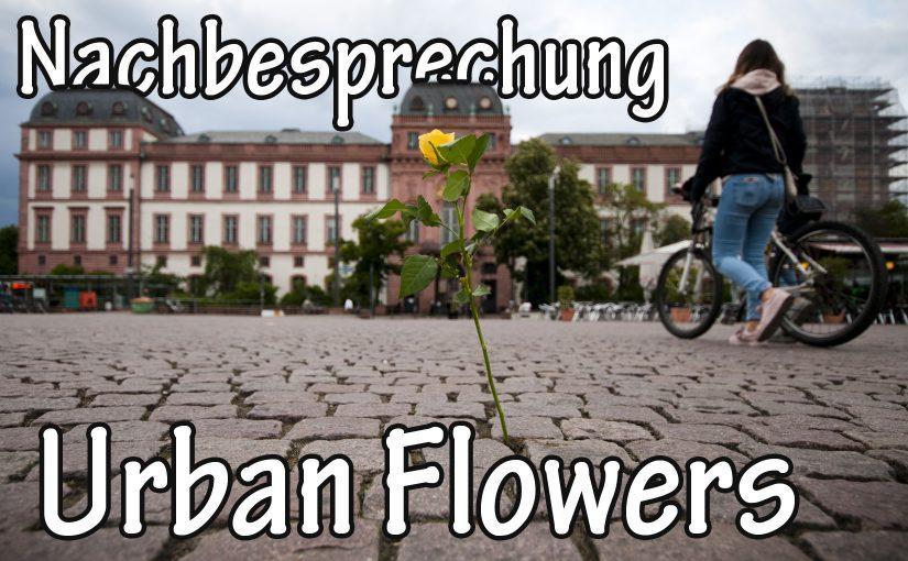 Nachbesprechung 'Urban Flowers'