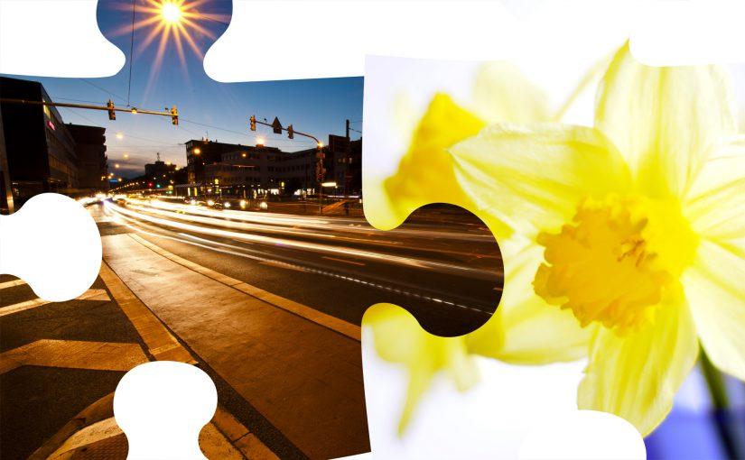 FotoTreffen 'Urban Flower'