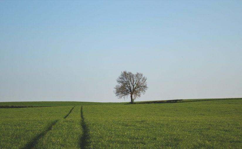 Stammtisch – Theorie Workshop Landschaftsfotografie